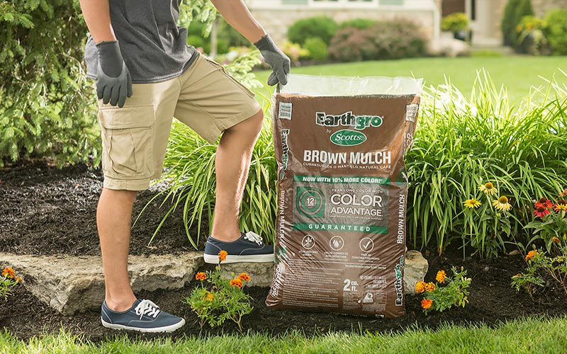 Cover with Mulch
