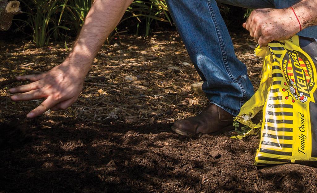 Gardener mixing amendments into soil