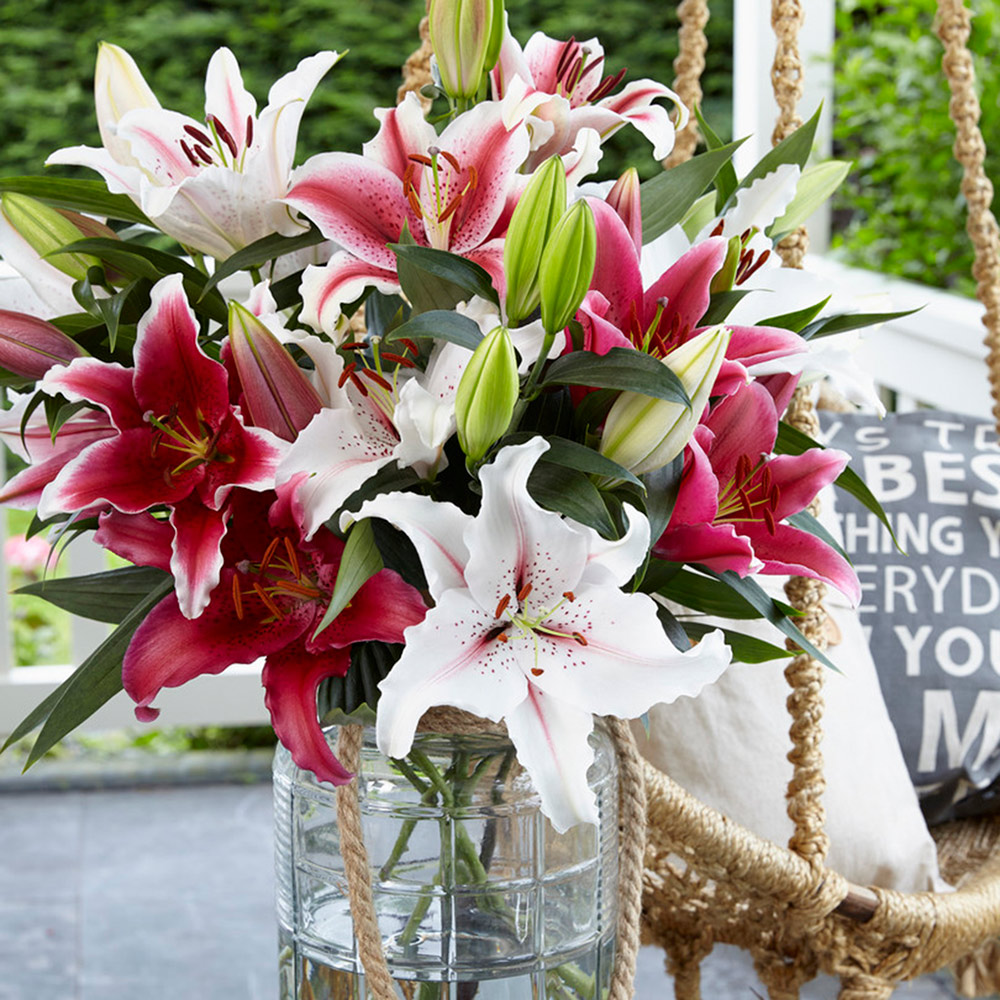 A vase of red and white lilies.