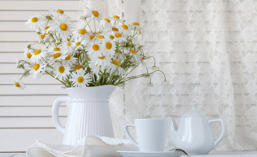 A white vase filled with daisies.
