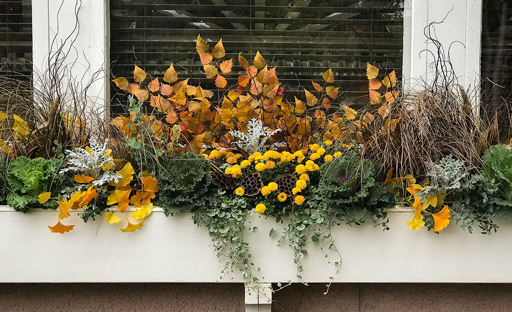 A window box filled with marigolds and other seasonal foliage.
