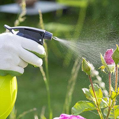 How to Fertilize an Organic Garden