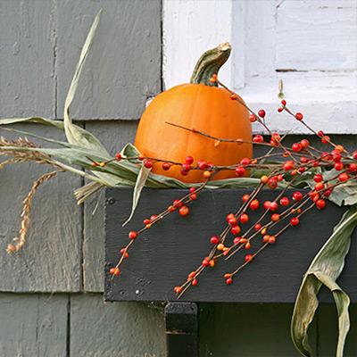 6 Bright Ways to Fill a Fall Window Box