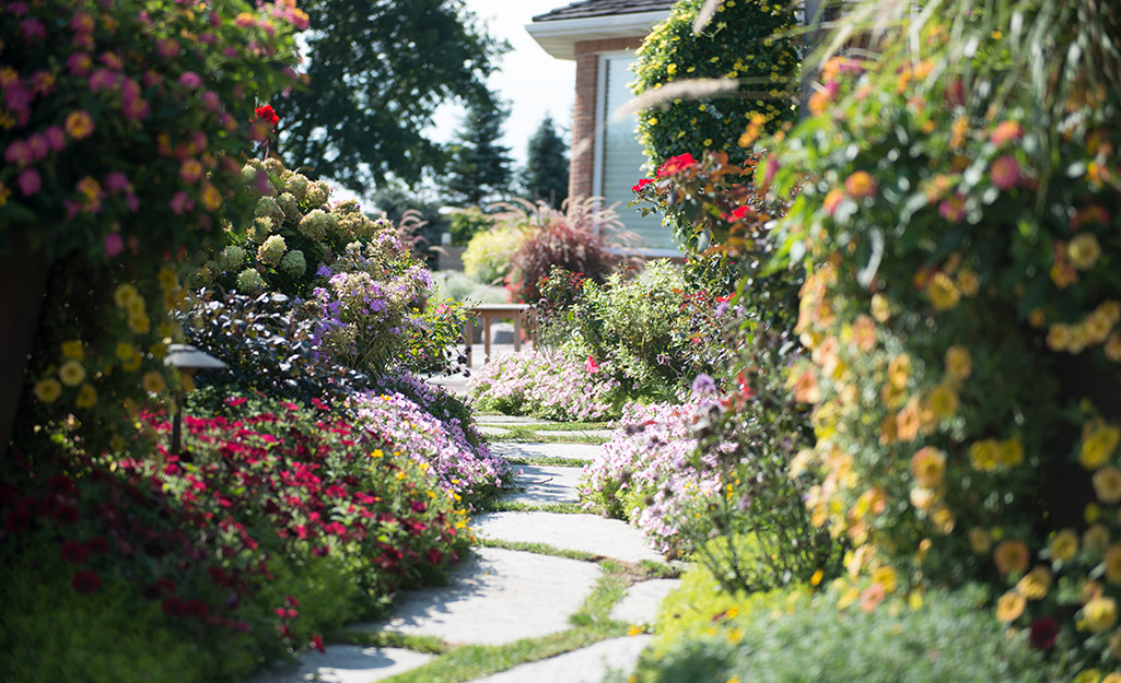 A stone garden path surrounded by colorful flowers.