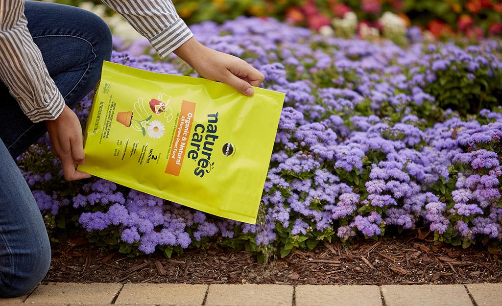A gardener fertilizes a flower bed.
