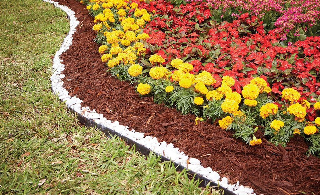 Mulch keeps a garden of annual blooms tidy.