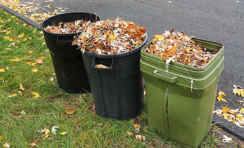 Three recycling cans filled with leaves sit near a curb.