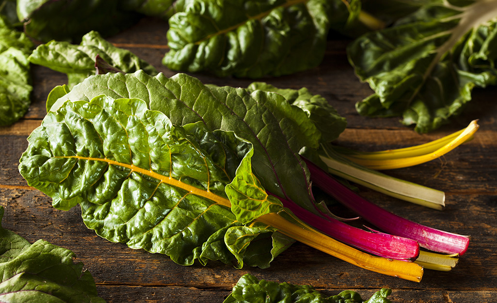 Swiss chard stems and leaves