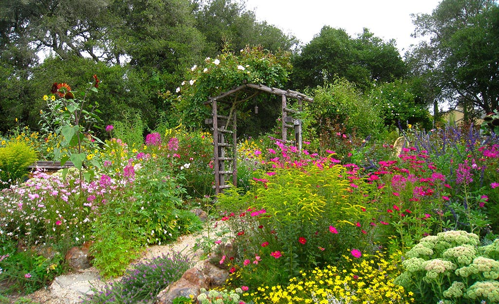Plant a Sustainable Garden