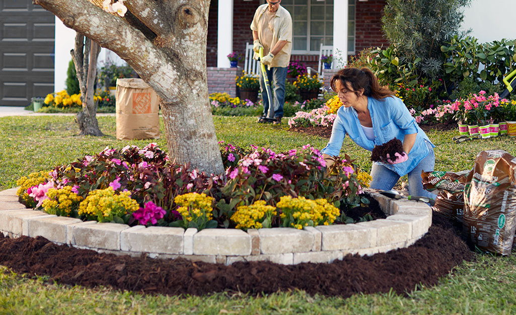 A flower bed with mulch