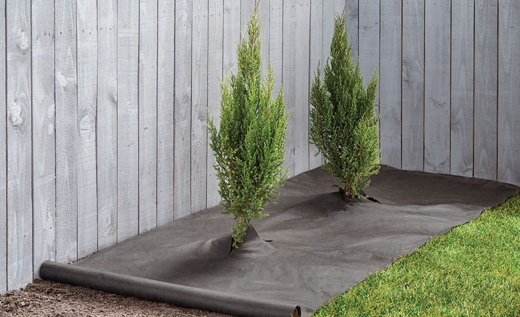 Landscape fabric in a backyard