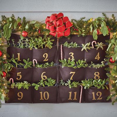 Countdown to Christmas with a DIY Vertical Garden