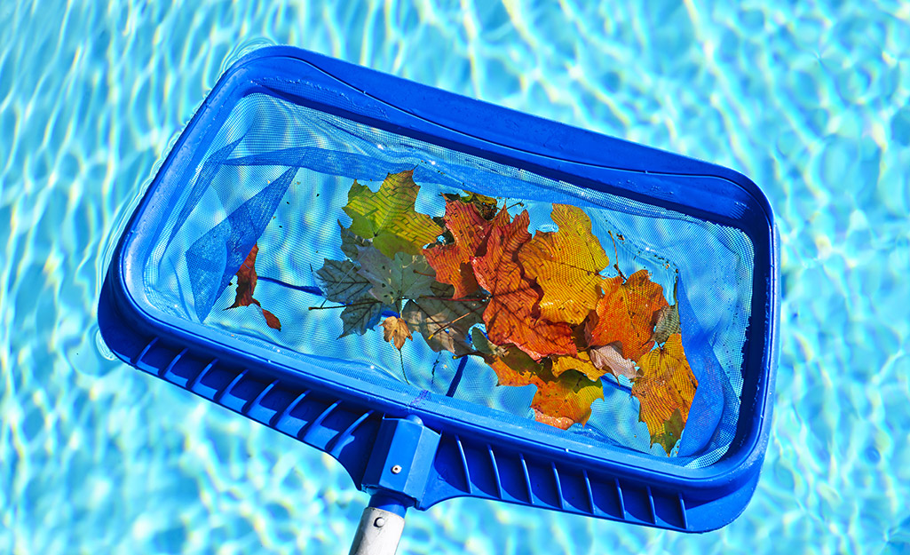 Someone cleaning leaves out of a stock tank pool.
