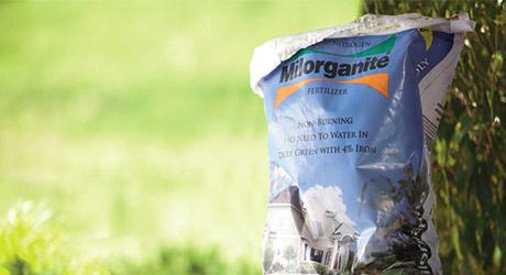 Apply organic fertilizer - Grow a Wildflower Garden