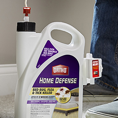 How To Get Rid Of Fleas The Home Depot