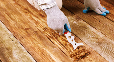 a person wearing protective gloves uses a scraping tool to remove loose finish from deck boards