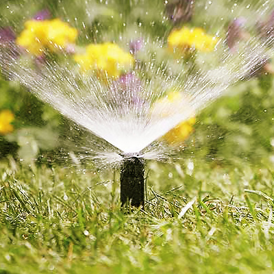 Best Irrigation Pumps for Your Yard