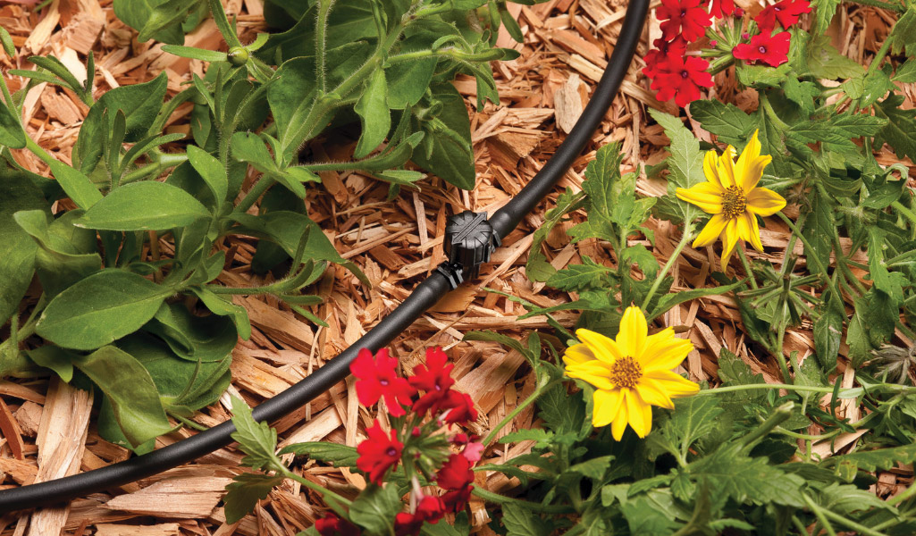 Drip irrigation waters a flower bed.