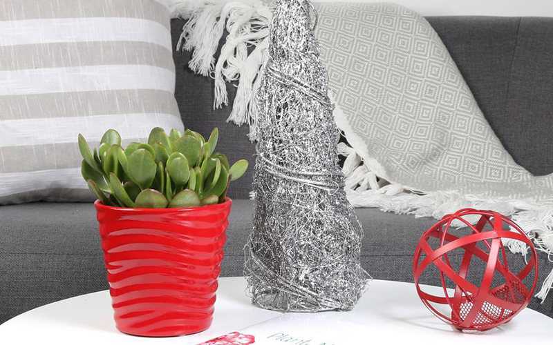 A jade plant in a red pot on a white side table.