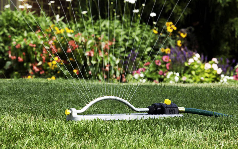 Have Watering Schedule - Lawn Watering Tips Techniques