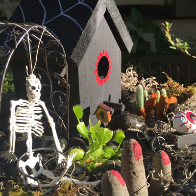 Make Your Own Halloween Scary Fairy Garden