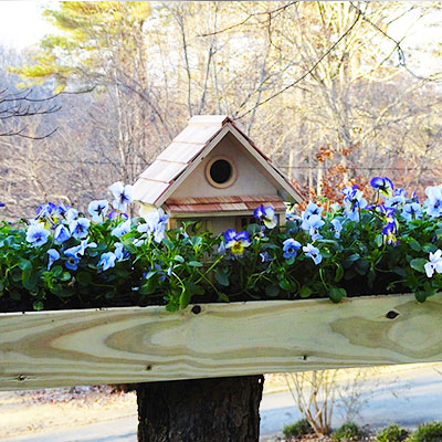 Make a Birdhouse Planter