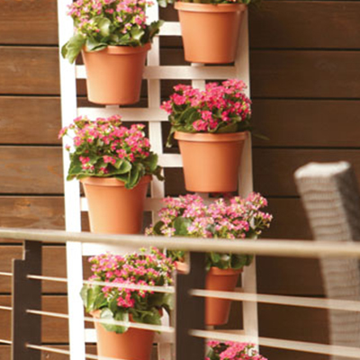 Make a Vertical Garden: Growing Up