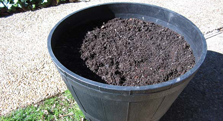 Fill with Potting Soil