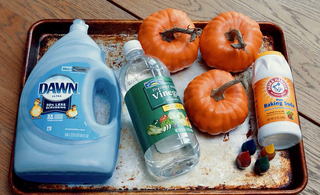 The materials for creating pumpkin volcanoes.