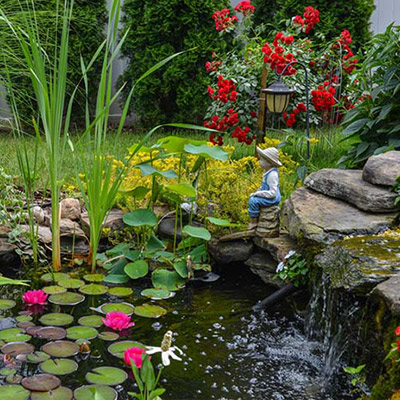 Pond Cleaners & Accessories