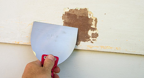 Scrub walls - Paint Your Home's Exterior