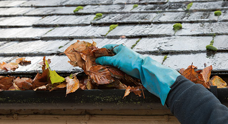 Prep outside - Preparing Home Inspection