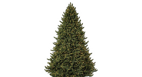 Lowes Fresh Christmas Trees.Best Real Christmas Trees For You The Home Depot