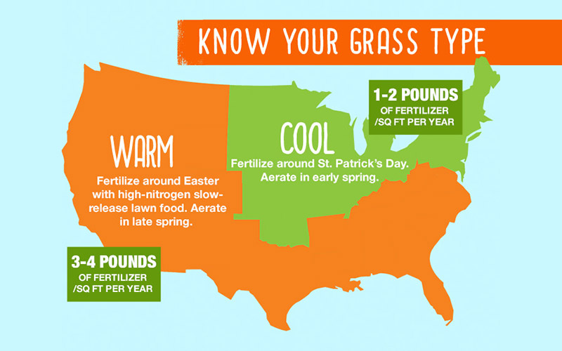 Infographic Know Your Grass Type