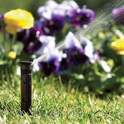 Sprinkler Pumps - Buying Guide