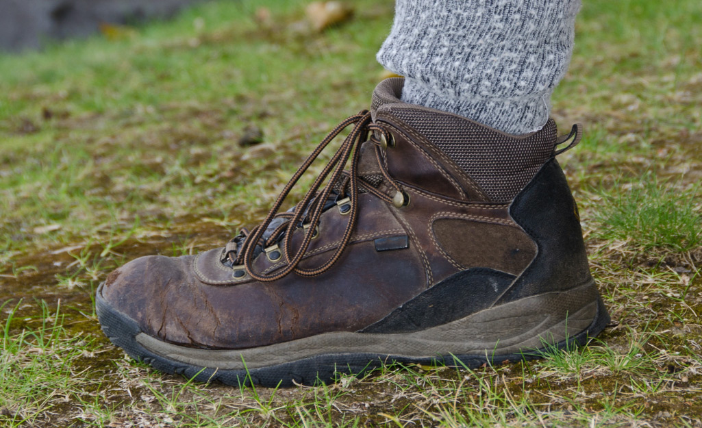 A work shoe on a lawn