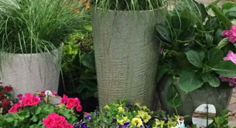 top-tips-successful-container-gardening-image-2