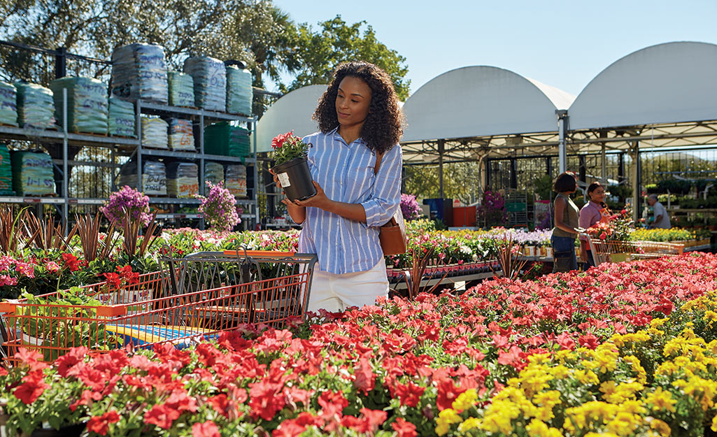 A woman shopping in a garden center.