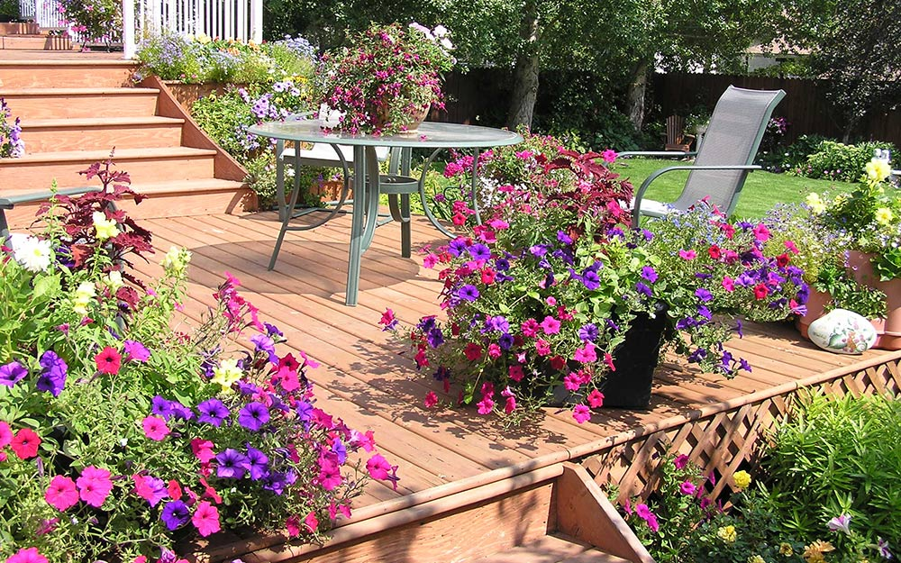 Flower containers on a deck.