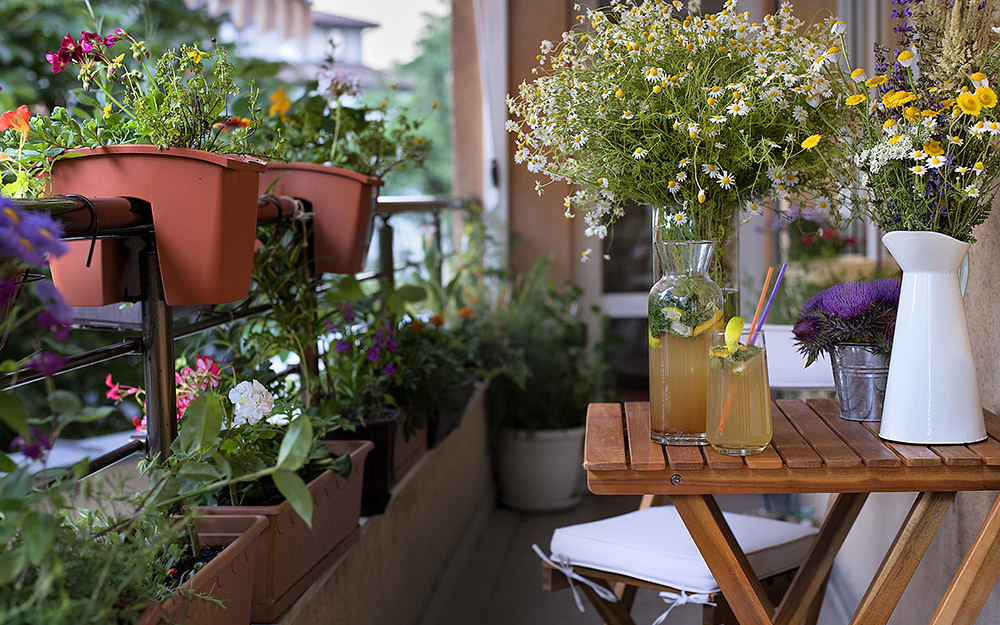 a balcony patio featuring lots of plants and greenery