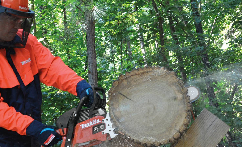 A person in safety gear using a chainsaw to cut a log.
