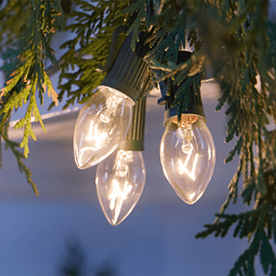 Best Christmas Lights for Your Home