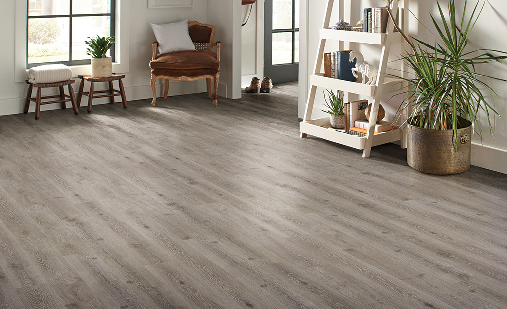 How To Choose The Best Flooring For Dogs, Laminate Flooring With Dogs