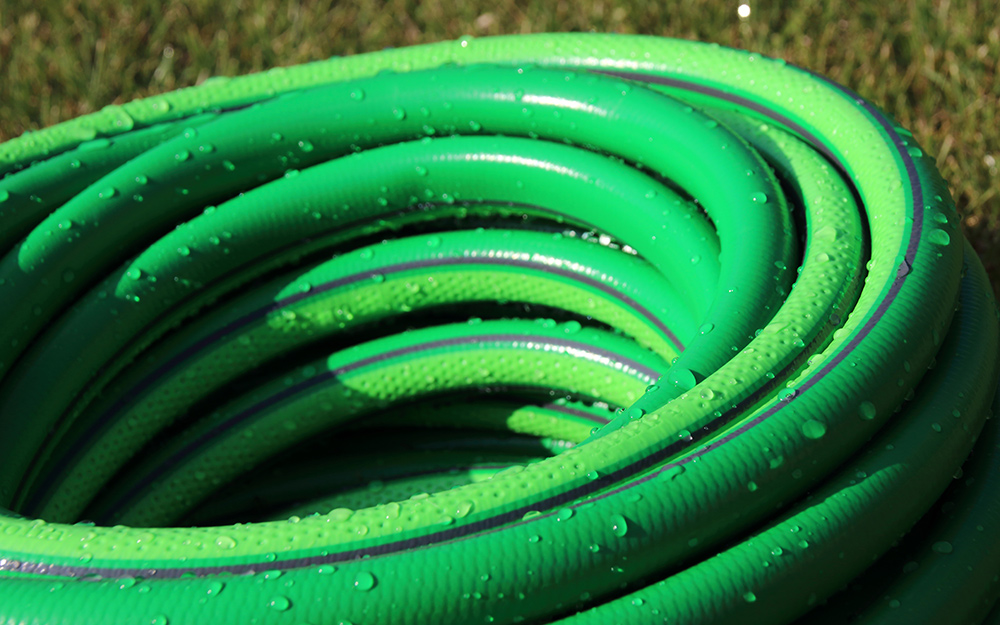 Rolled green garden hose.