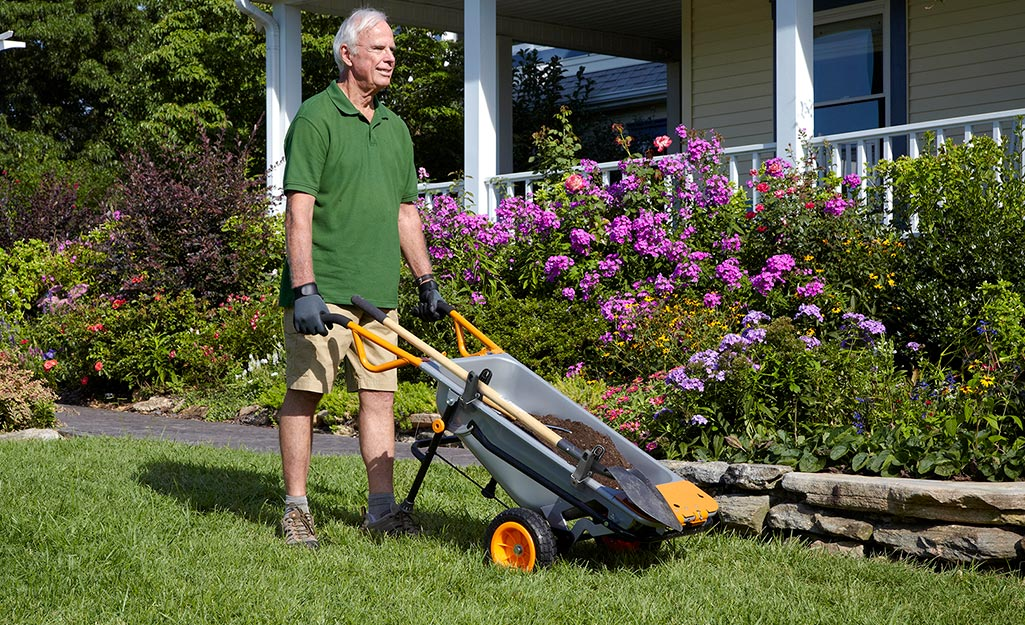 Gardener pushes wheelbarrow with tools in yard