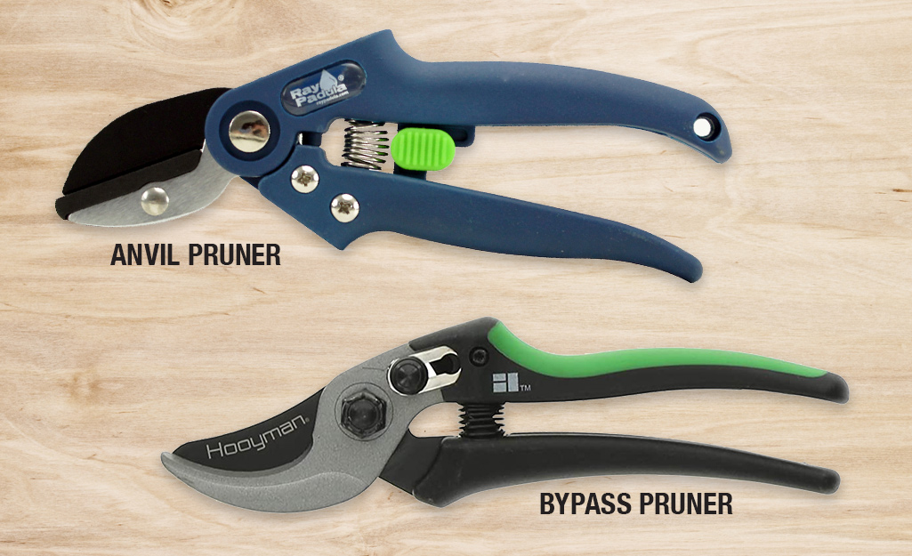 Anvil pruner and bypass pruner comparison