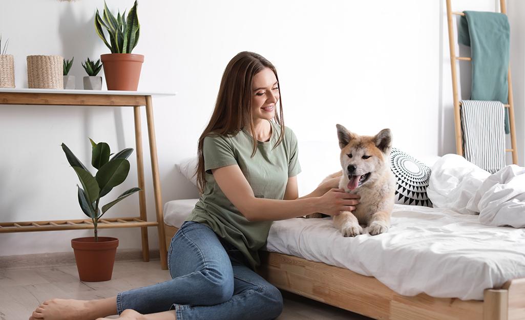 Chủ nhà và con chó của cô ấy trong nhà với cây trồng trong nhà.
