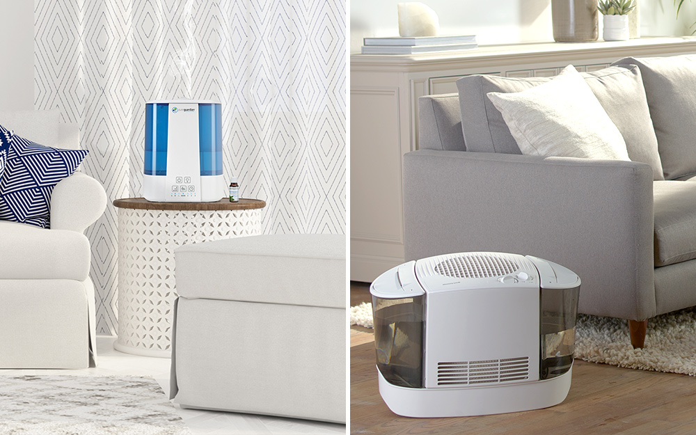 Best Humidifiers and Dehumidifiers for Your Home - The Home