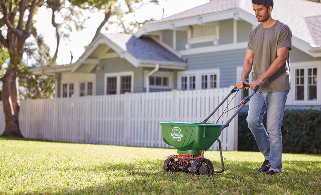 A man using a spreader to distribute lawn fertilizer in front of a house with a white fence.