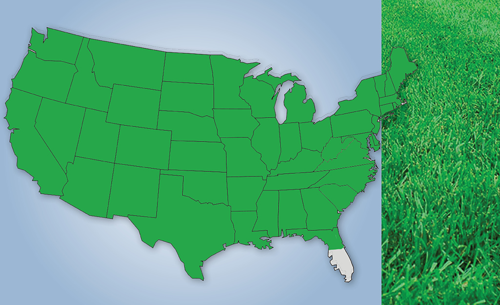 A map graphic shows the appearance and U.S. location of mix grass.